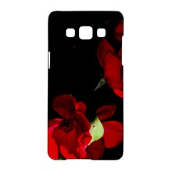 Roses 1 Samsung Galaxy A5 Hardshell Case  by timelessartoncanvas
