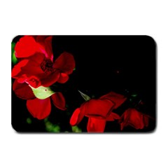 Roses 2 Plate Mats by timelessartoncanvas