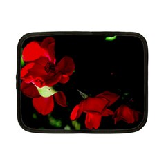 Roses 2 Netbook Case (small)  by timelessartoncanvas