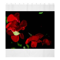 Roses 2 Shower Curtain 66  X 72  (large)  by timelessartoncanvas