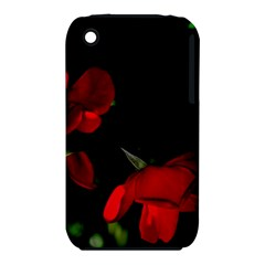 Roses 2 Apple Iphone 3g/3gs Hardshell Case (pc+silicone) by timelessartoncanvas