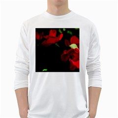Roses 3 White Long Sleeve T Shirts by timelessartoncanvas
