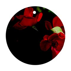 Roses 3 Round Ornament (two Sides)  by timelessartoncanvas