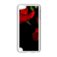 Roses 3 Apple Ipod Touch 5 Case (white) by timelessartoncanvas