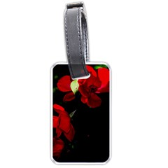 Roses 4 Luggage Tags (one Side)  by timelessartoncanvas