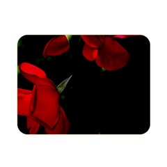 Roses 4 Double Sided Flano Blanket (mini)  by timelessartoncanvas