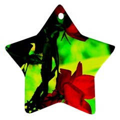 Red Roses And Bright Green 1 Ornament (star)  by timelessartoncanvas