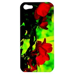 Red Roses And Bright Green 1 Apple Iphone 5 Hardshell Case by timelessartoncanvas