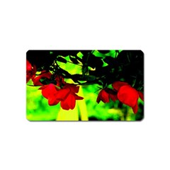 Red Roses And Bright Green 2 Magnet (name Card) by timelessartoncanvas