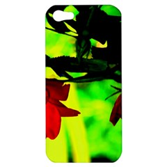 Red Roses And Bright Green 2 Apple Iphone 5 Hardshell Case by timelessartoncanvas