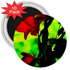 Red Roses And Bright Green 3 3  Magnets (10 Pack)  by timelessartoncanvas