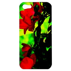 Red Roses And Bright Green 3 Apple Iphone 5 Hardshell Case by timelessartoncanvas