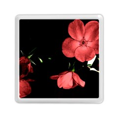 Mauve Roses 1 Memory Card Reader (square)  by timelessartoncanvas