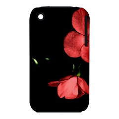 Mauve Roses 1 Apple Iphone 3g/3gs Hardshell Case (pc+silicone) by timelessartoncanvas