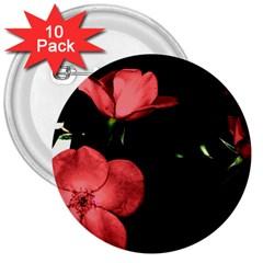 Mauve Roses 2 3  Buttons (10 Pack)  by timelessartoncanvas