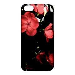Mauve Roses 4 Apple Iphone 5c Hardshell Case by timelessartoncanvas