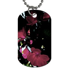 Mauve Pink Roses Dog Tag (two Sides) by timelessartoncanvas