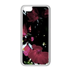 Mauve Pink Roses Apple Iphone 5c Seamless Case (white) by timelessartoncanvas