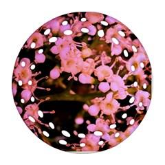 Little Mauve Flowers Ornament (round Filigree)  by timelessartoncanvas