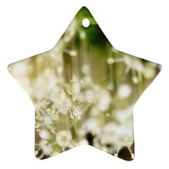 Little White Flowers Ornament (star)  by timelessartoncanvas
