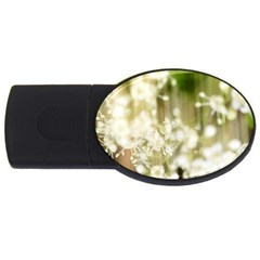 Little White Flowers Usb Flash Drive Oval (2 Gb)  by timelessartoncanvas