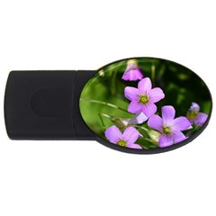 Little Purple Flowers Usb Flash Drive Oval (2 Gb)  by timelessartoncanvas