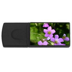 Little Purple Flowers Usb Flash Drive Rectangular (4 Gb)  by timelessartoncanvas