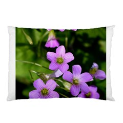 Little Purple Flowers Pillow Case by timelessartoncanvas