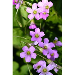 Little Purple Flowers 5 5  X 8 5  Notebooks by timelessartoncanvas