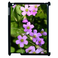Little Purple Flowers Apple Ipad 2 Case (black) by timelessartoncanvas