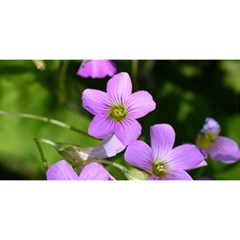 Little Purple Flowers You Are Invited 3d Greeting Card (8x4)  by timelessartoncanvas