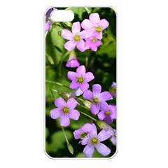 Little Purple Flowers Apple Iphone 5 Seamless Case (white) by timelessartoncanvas