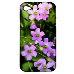 Little Purple Flowers Apple Iphone 4/4s Hardshell Case (pc+silicone) by timelessartoncanvas
