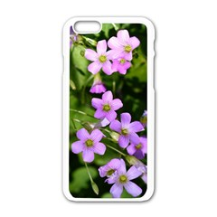 Little Purple Flowers Apple Iphone 6/6s White Enamel Case by timelessartoncanvas