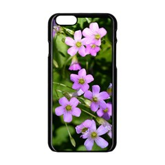 Little Purple Flowers Apple Iphone 6/6s Black Enamel Case by timelessartoncanvas