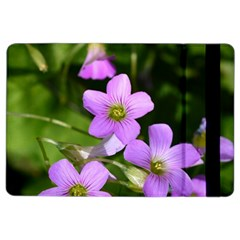 Little Purple Flowers Ipad Air 2 Flip by timelessartoncanvas