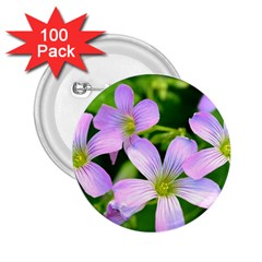 Little Purple Flowers 2 2 25  Buttons (100 Pack)  by timelessartoncanvas