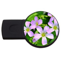 Little Purple Flowers 2 Usb Flash Drive Round (2 Gb)  by timelessartoncanvas