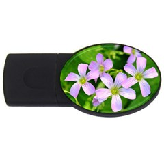 Little Purple Flowers 2 Usb Flash Drive Oval (2 Gb)  by timelessartoncanvas