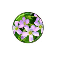 Little Purple Flowers 2 Hat Clip Ball Marker (4 Pack) by timelessartoncanvas