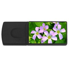 Little Purple Flowers 2 Usb Flash Drive Rectangular (4 Gb)  by timelessartoncanvas