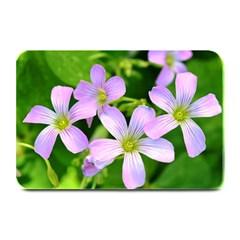 Little Purple Flowers 2 Plate Mats by timelessartoncanvas