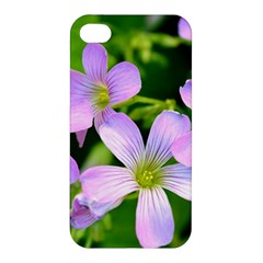 Little Purple Flowers 2 Apple Iphone 4/4s Hardshell Case by timelessartoncanvas