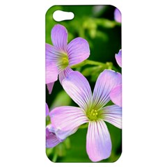 Little Purple Flowers 2 Apple Iphone 5 Hardshell Case by timelessartoncanvas