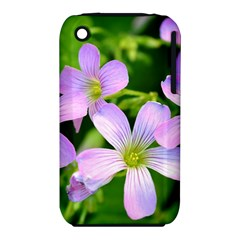 Little Purple Flowers 2 Apple Iphone 3g/3gs Hardshell Case (pc+silicone) by timelessartoncanvas