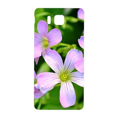Little Purple Flowers 2 Samsung Galaxy Alpha Hardshell Back Case by timelessartoncanvas