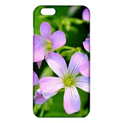 Little Purple Flowers 2 Iphone 6 Plus/6s Plus Tpu Case by timelessartoncanvas