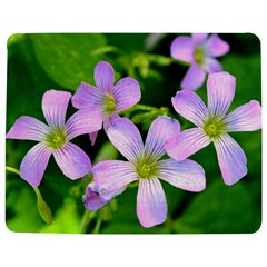 Little Purple Flowers 2 Jigsaw Puzzle Photo Stand (rectangular) by timelessartoncanvas