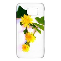 Margaritas Bighop Design Galaxy S6 by bighop