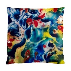 Colors Of The World Bighop Collection By Jandi Standard Cushion Case (two Sides) by bighop